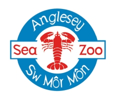 asz_logo