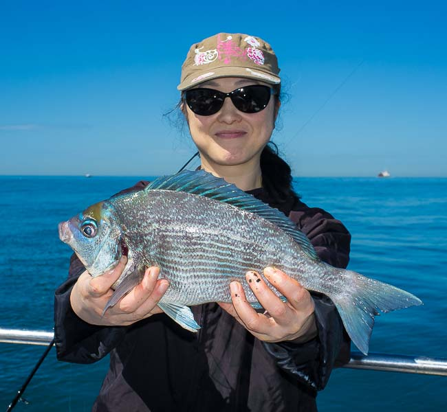 bream-fishing-kingmere