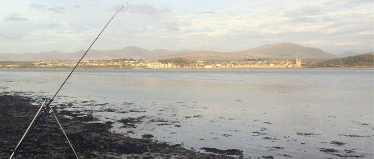 sea-fishing-bass-anglesey-riding-centre