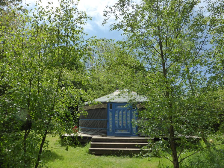 Birch-Yurt-Anglesey-Tipi-and-Yurt-Holidays