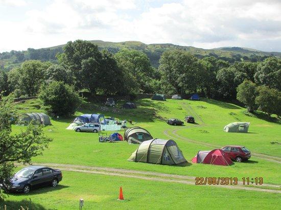 rynys-farm-camping-site
