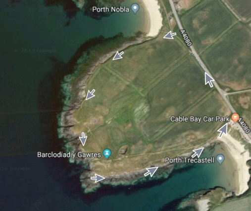 coastal path spring walks- google.