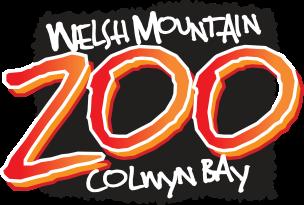 welsh mountin zoo