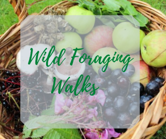 wild foraging course