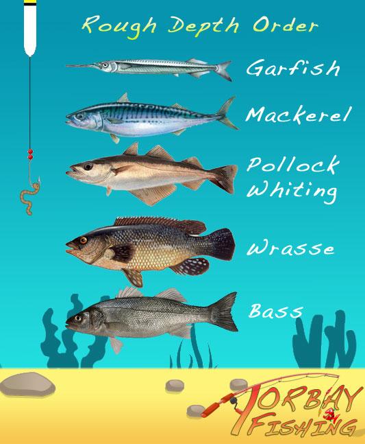 pier-fishing-depths