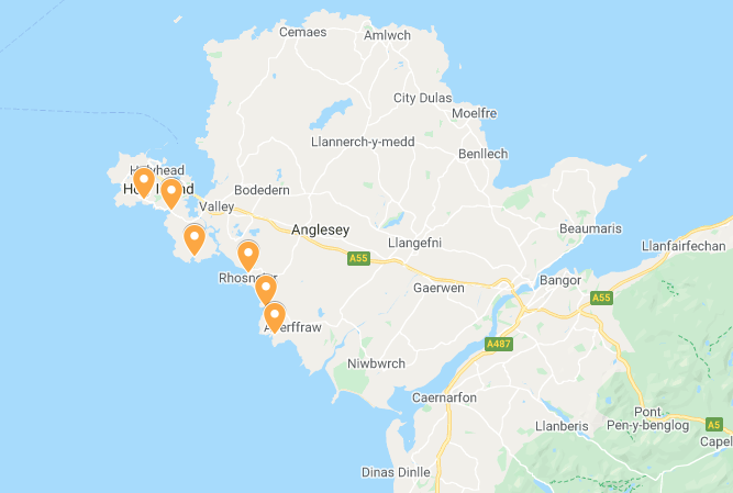 Jellyfish beach locations Anglesey and Holy island