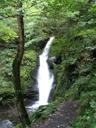 Dolgoch Falls- Image : pintarest