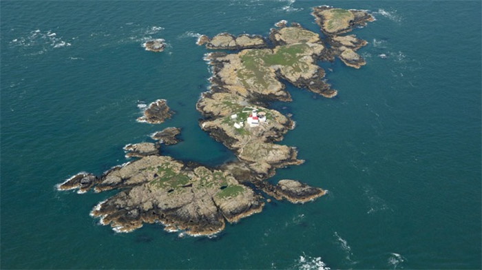 Skerries islands - image - rarebirdalert.co.uk